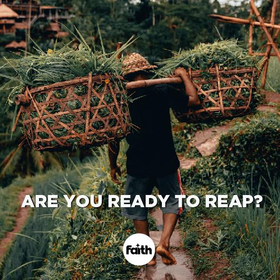 Reap!