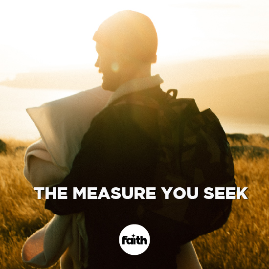 The Measure You Seek